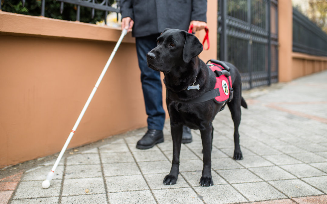 8 Clichés About Blind People