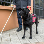 8 Clichés About Blind People