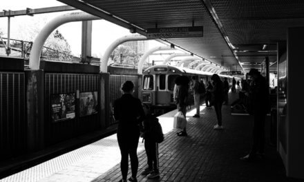 MBTA: a Global Model of Accessible Public Transportation