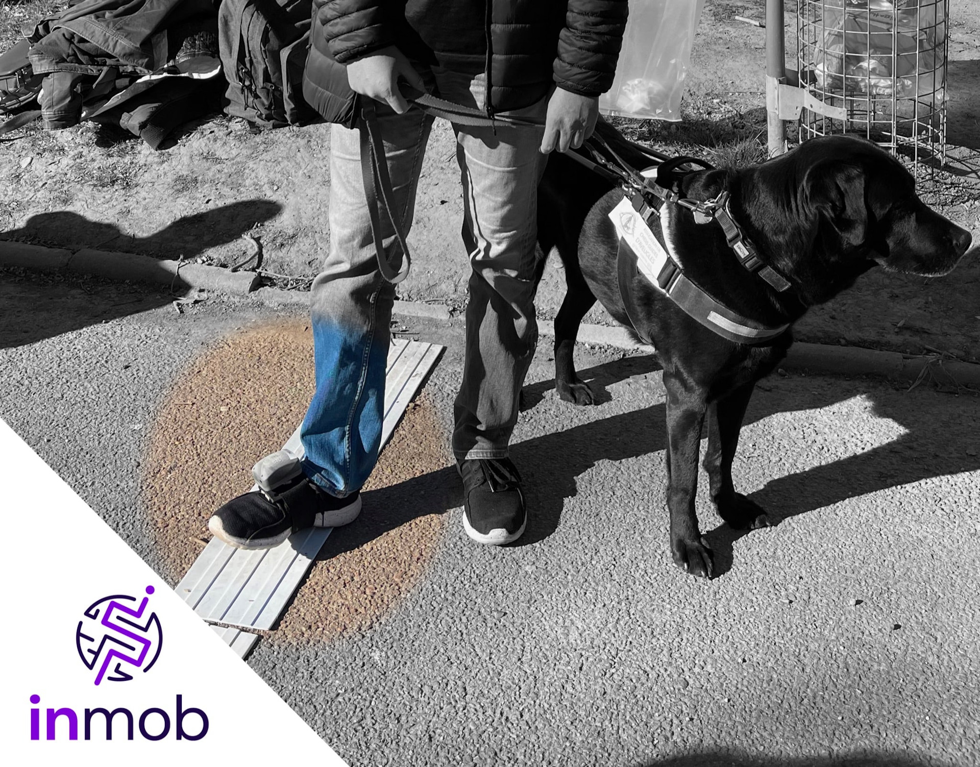 A visually impaired and his guide dog are part of the research led by GEOLOC Team and Okeenea Digital